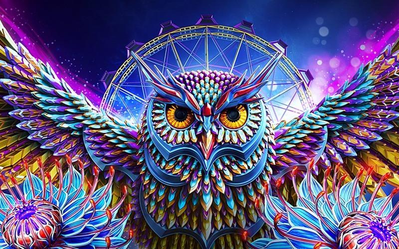 Spolier Alert Photo Leak Of The Owl For Edc Las Vegas